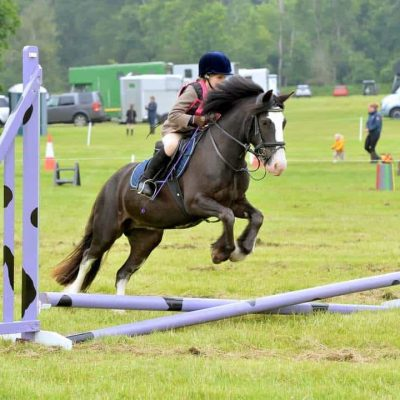 Blue Cross and The Pony Club team up for auction fundraiser